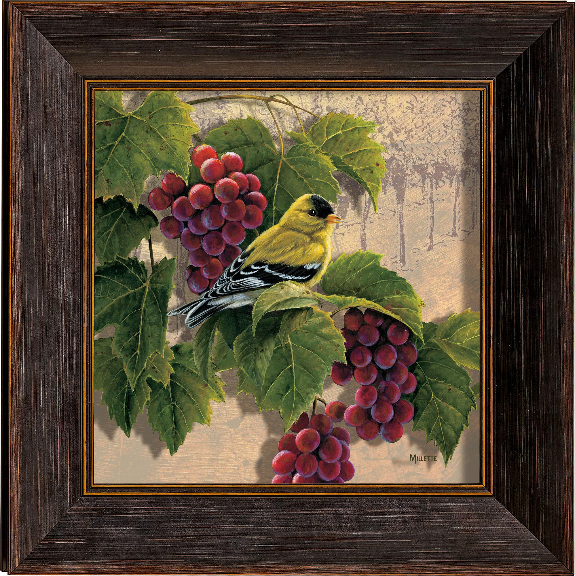 Orchard Visitor—Goldfinch and Grapes.