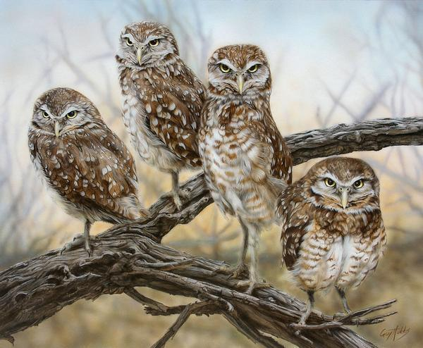 <I>Owl Together Now&mdash;burrowing Owls</i> Limited Edition Print<Br/>10.5H X 12.75W Art Collection
