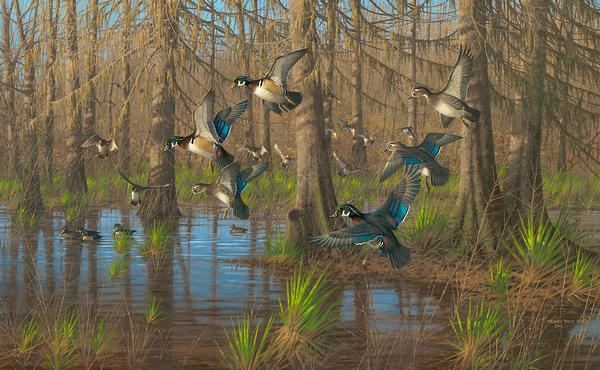 Party Time&mdash;wood Ducks Limited Edition Canvas<Br/>21H X 34W Art Collection