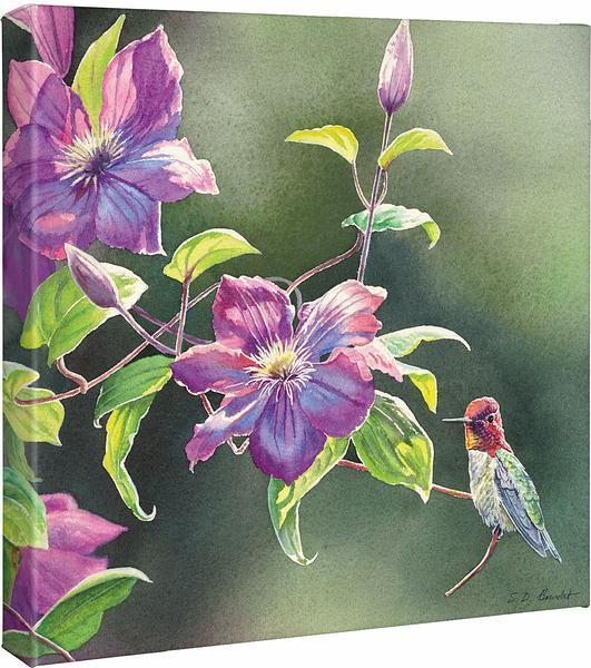 <I>Passion For Pink&mdash;annas In Clematis</i> Gallery Wrapped Canvas