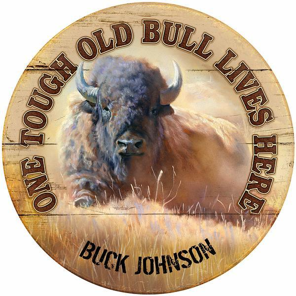 <i>Tough Old Bull Lives HereBison</i>