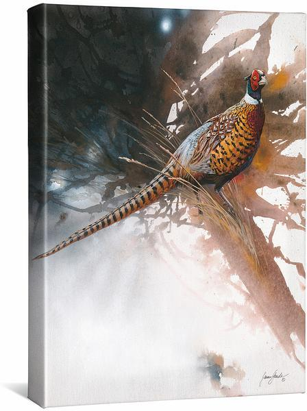 <I>Pheasant</i> Gallery Wrapped Canvas