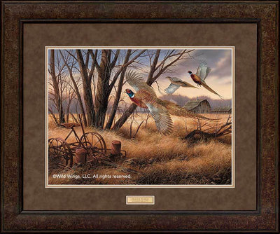 <I>Prairie Wings&mdash;pheasants</i> Gna Premium+ Framed Print<Br/>29H X 35W Art Collection