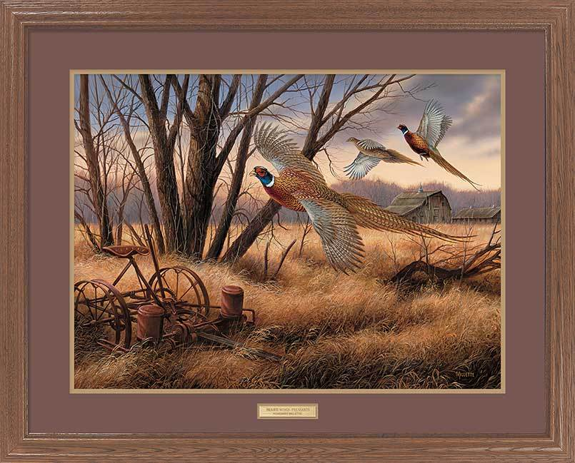 <I>Prairie Wings&mdash;pheasants</i> Gna Premium Framed Print<Br/>25H X 31W Art Collection