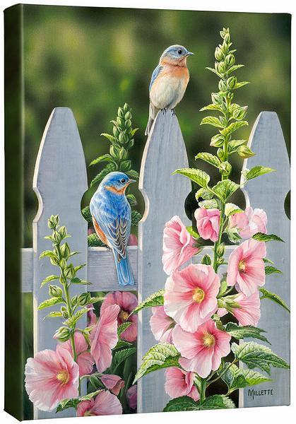 <I>Picket Fence&mdash;bluebirds</i> Gallery Wrapped Canvas