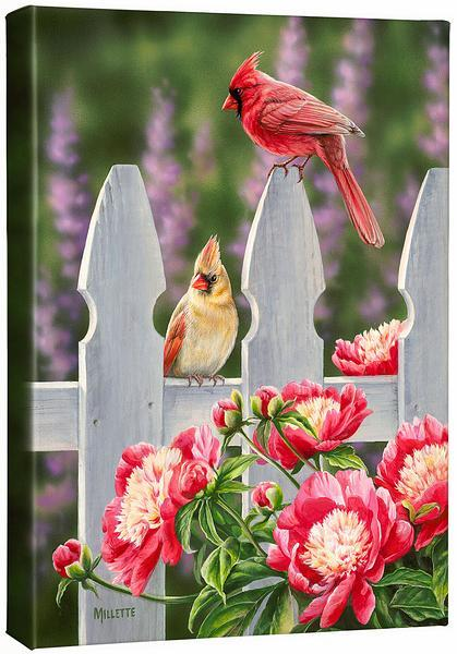 <I>Picket Fence&mdash;cardinals</i> Gallery Wrapped Canvas