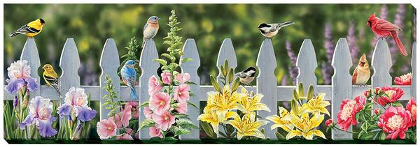 Picket Fence—Songbirds.