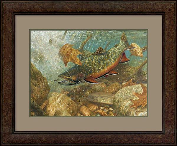 Plunge Pool Revistited-Brook Trout Art Collection