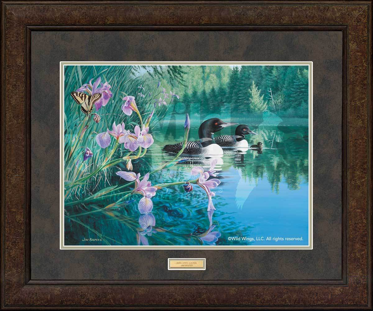 <I>Iris Cove&mdash;loons</i> Gna Premium+ Framed Print<Br/>29H X 35W Art Collection