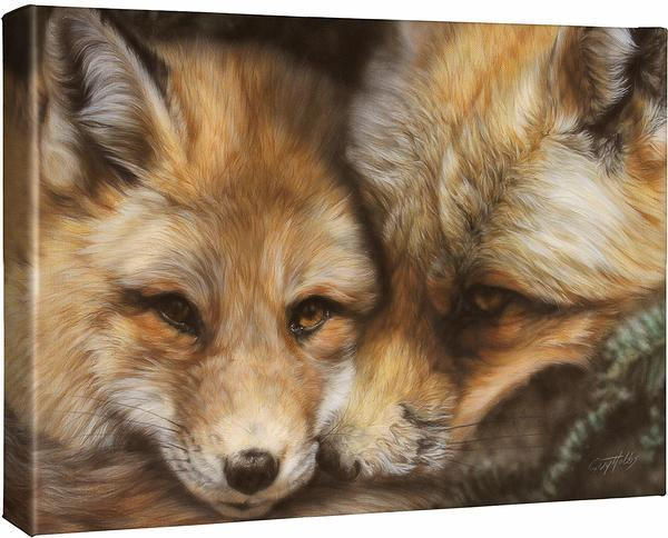 <I>Red In The Face&mdash;fox</i> Gallery Wrapped Canvas