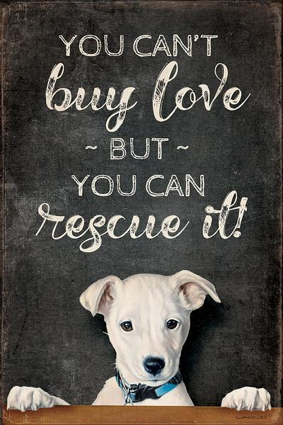 <I>You Cant Buy Love&mdash;dog</i> 12 X 18 Wood Sign