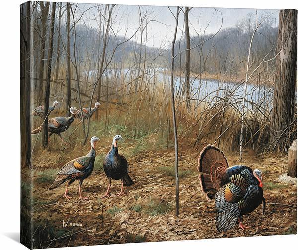<i>River's Edge Courtship&mdash;Turkeys</i>