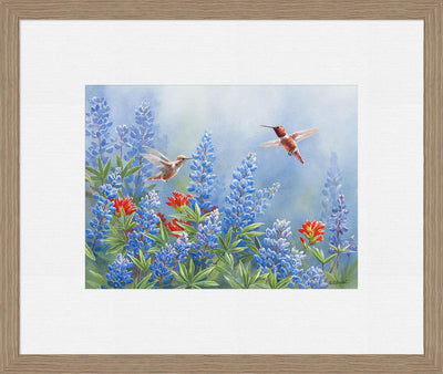 Rufous Pair Art Collection