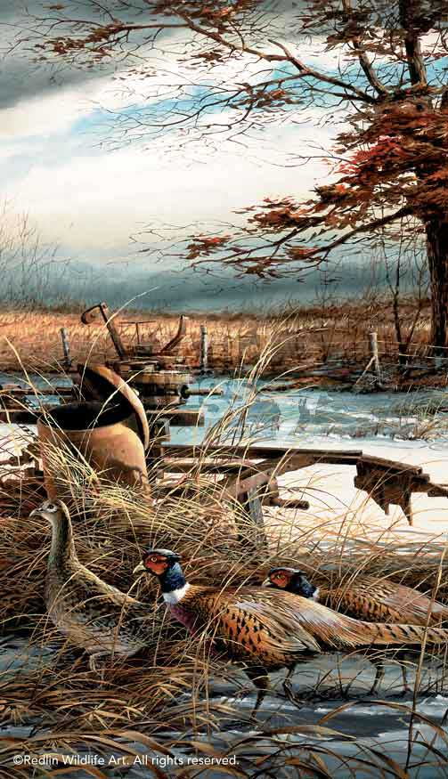 Rusty Refuge II-Pheasants Art Collection