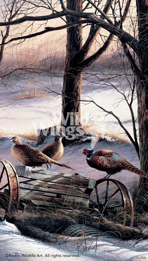 Rusty Refuge III-Pheasants Art Collection