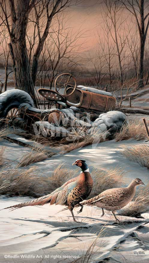 Rusty Refuge IV-Pheasants Art Collection