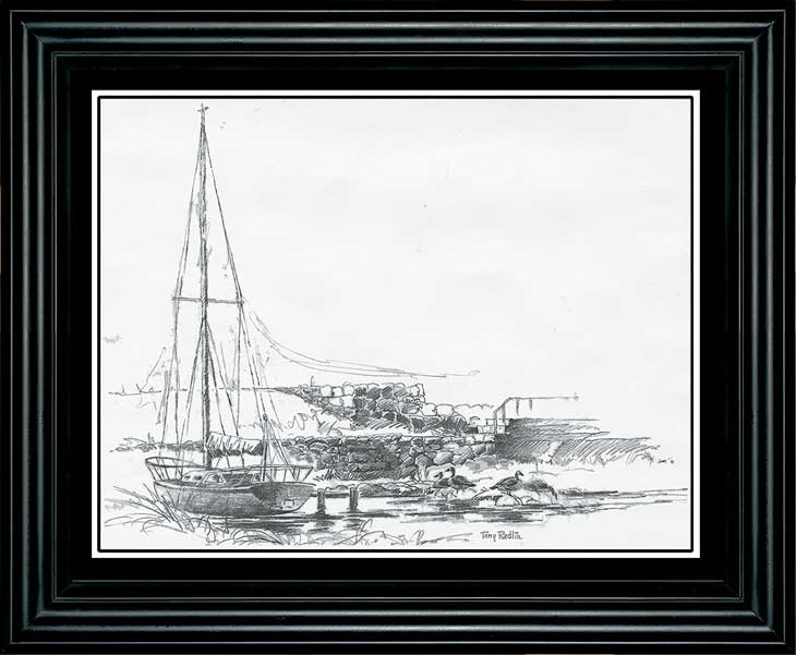 Sailboat Study Art Collection