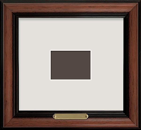 Single Stamp Conservation Frame