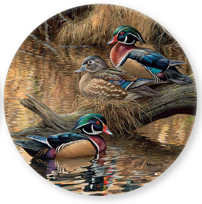 Wood Duck Coasters.