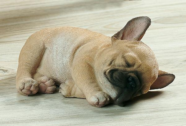 Sleeping French Bulldog Puppy Sculpture