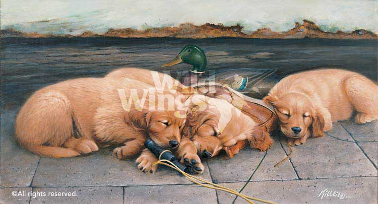 Golden Dreams-Sleeping Puppies Art Collection