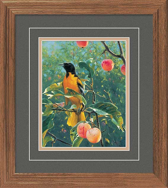 <i>Oriole in the Orchard</i>