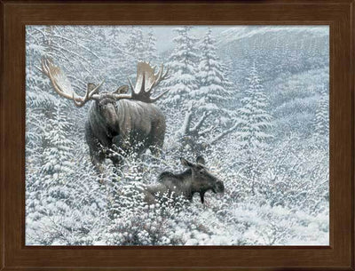<I>Patient Suitor&mdash;moose</i> Framed Studio Canvas<Br/>17H X 22W Art Collection