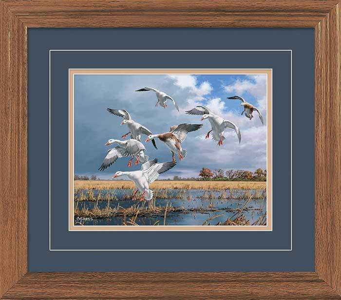 Texas Light&mdash;snow Geese Gna Deluxe Framed Print<Br/>16.25H X 18.5W Art Collection