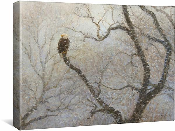 <I>Snowstorm&mdash;bald Eagle</i> Gallery Wrapped Canvas