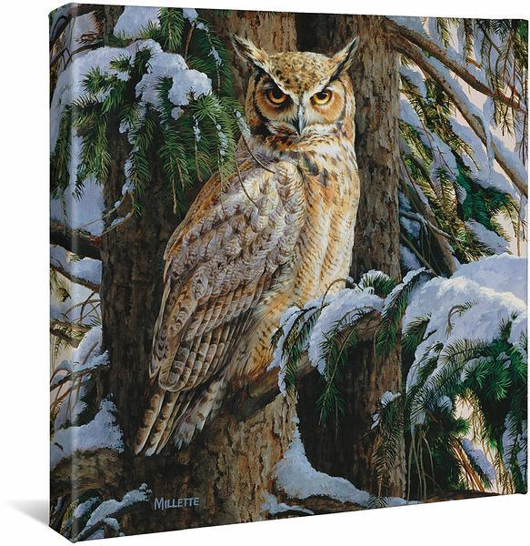 <I>Snowy Perch&mdash;great Horned Owl</i> Gallery Wrapped Canvas