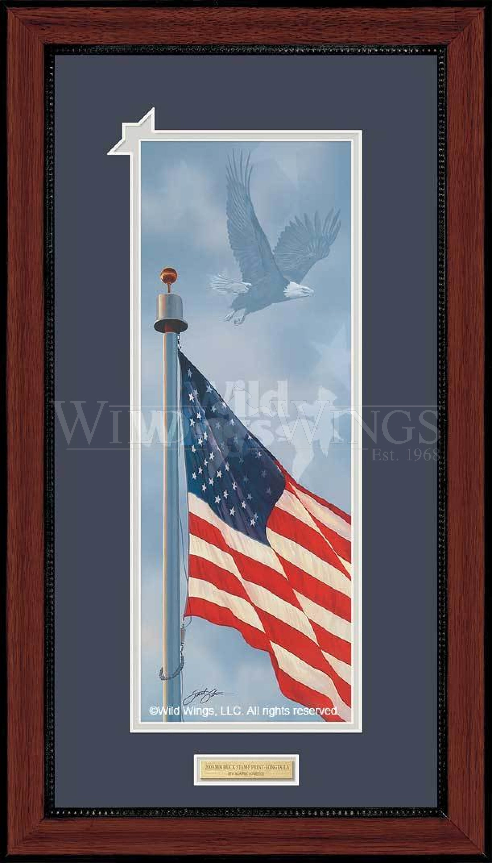 <I>Spirit Of America&mdash;bald Eagle</i> Framed Print<Br/>27H X 15W Art Collection