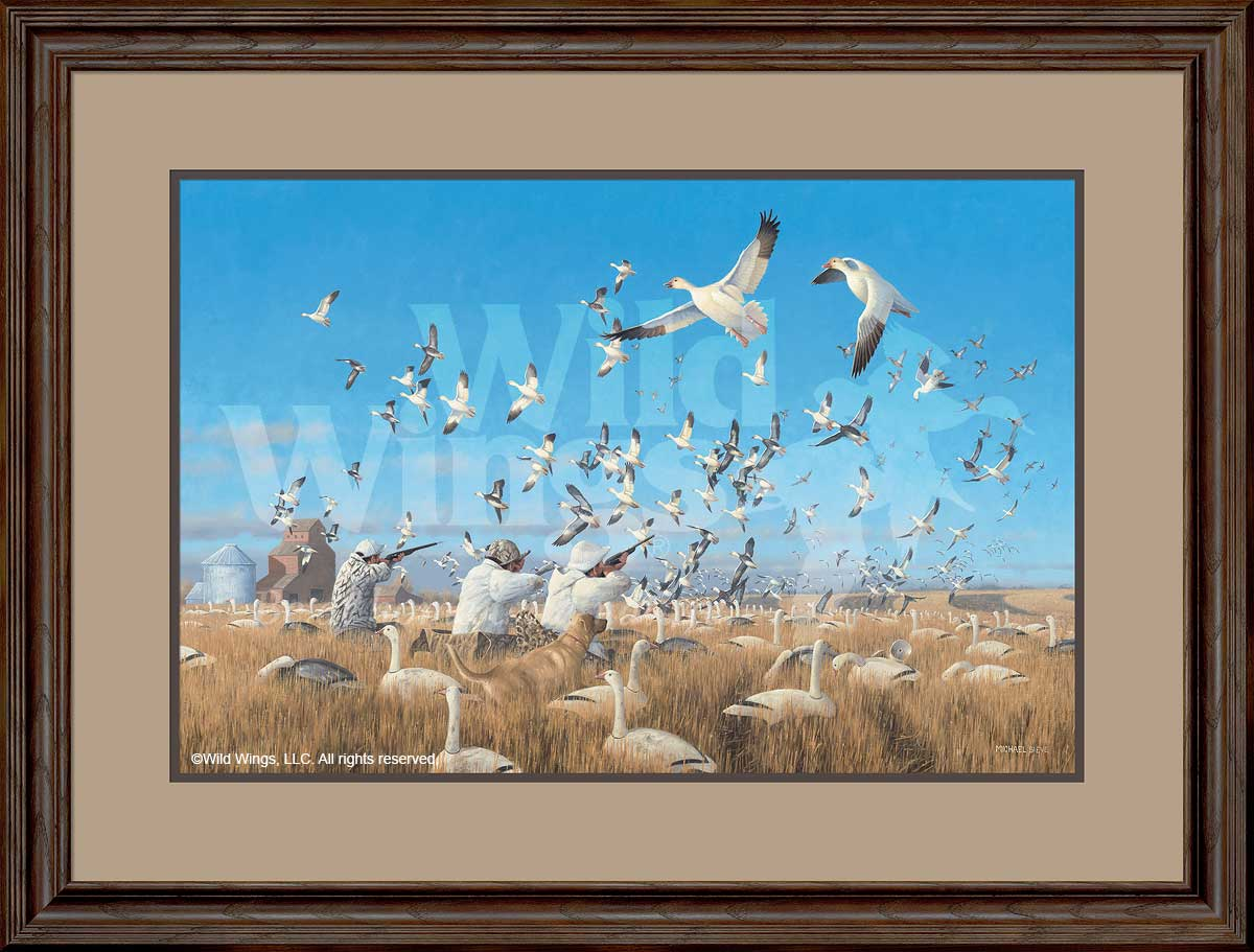 Springtime Snows-Goose Hunting Art Collection