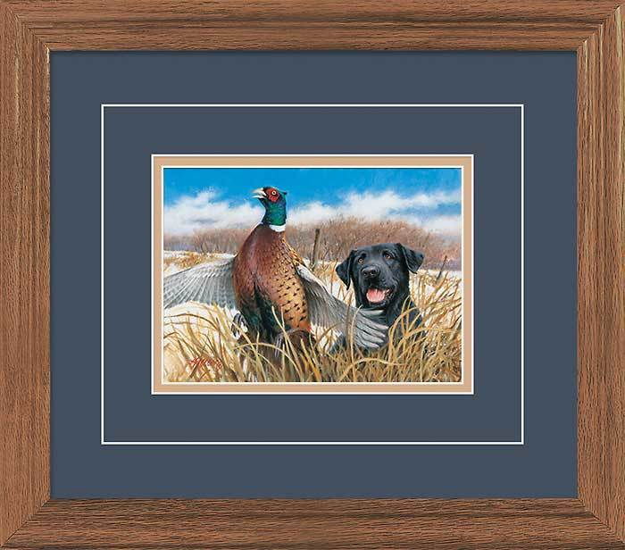 Startled—Black Lab & Pheasant