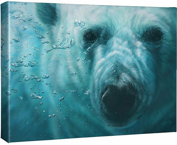 <I>Sub Zero&mdash;polar Bear</i> Gallery Wrapped Canvas<Br/>13H X 18W Art Collection