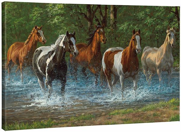 <I>Summer Creek&mdash;horses</i> Gallery Wrapped Canvas