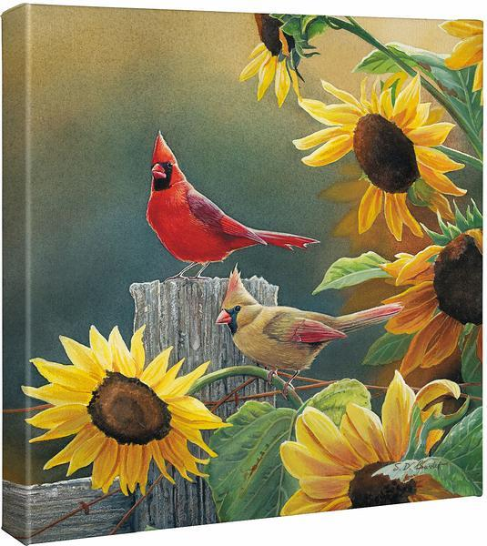 <I>Sunny Side Up&mdash;cardinals</i> Gallery Wrapped Canvas