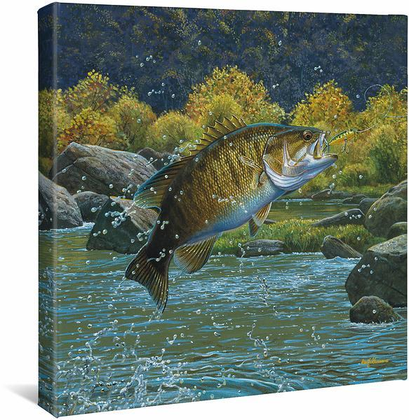 <I>Tail Walking&mdash;smallmouth Bass</i> Gallery Wrapped Canvas