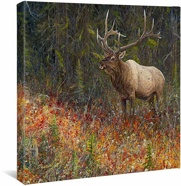 <I>Tapestry&mdash;elk</i> Gallery Wrapped Canvas