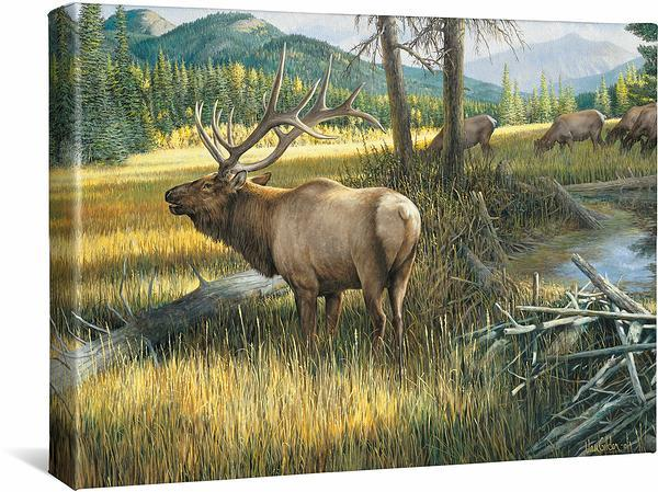 <I>The Guardian&mdash;elk</i> Gallery Wrapped Canvas