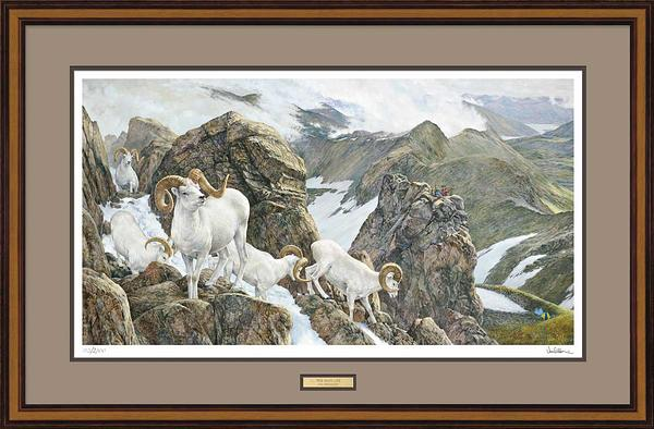 High Life-Dall Sheep Limited Edition Print