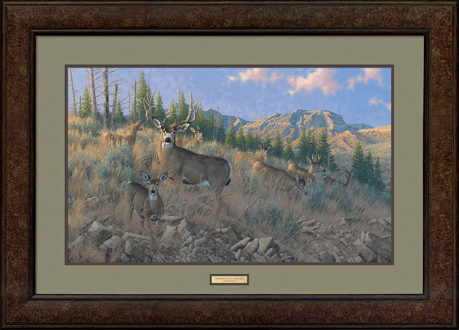 The Magic Hour-Mule Deer Art Collection
