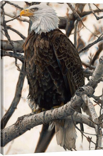 <i>The Sentinel&mdash;Bald Eagle</i>