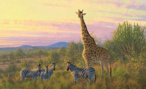 <i>The Watch Tower&mdash;Giraffe & Zebras</i>