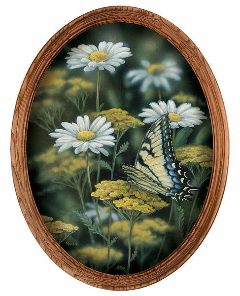 Tiger Swallowtail Framed Canvas Oval