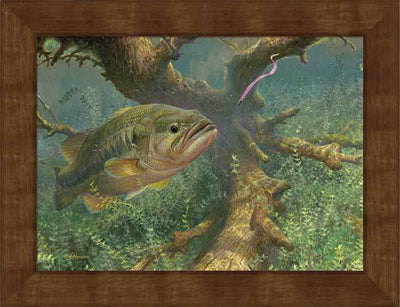 <I>Tight To Cover&mdash;largemouth Bass</i> Framed Studio Canvas<Br/>17H X 22W Art Collection