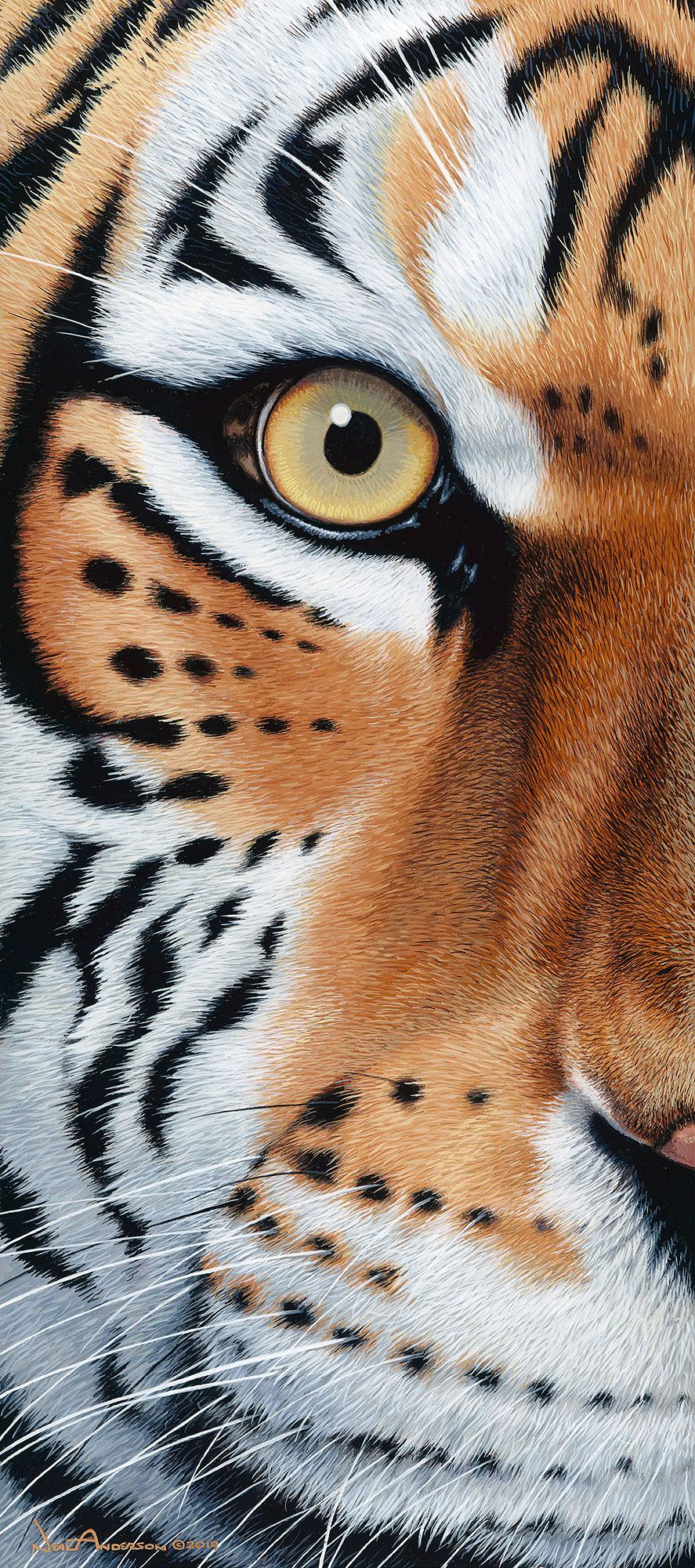Too Close-Tiger Art Collection