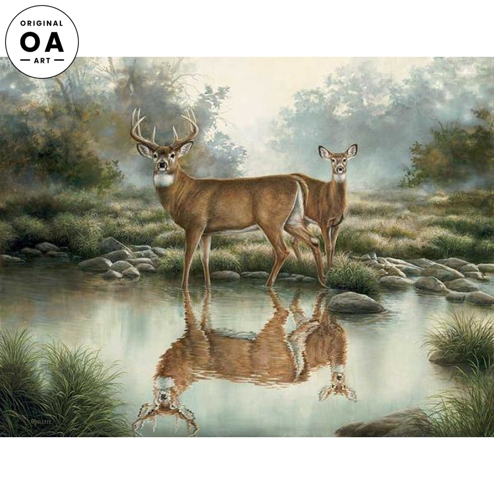 Tranquil Waters—Whitetail Deer.