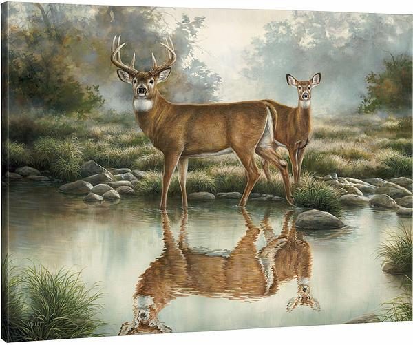 <i>Tranquil Waters&mdash;Whitetail Deer</i>