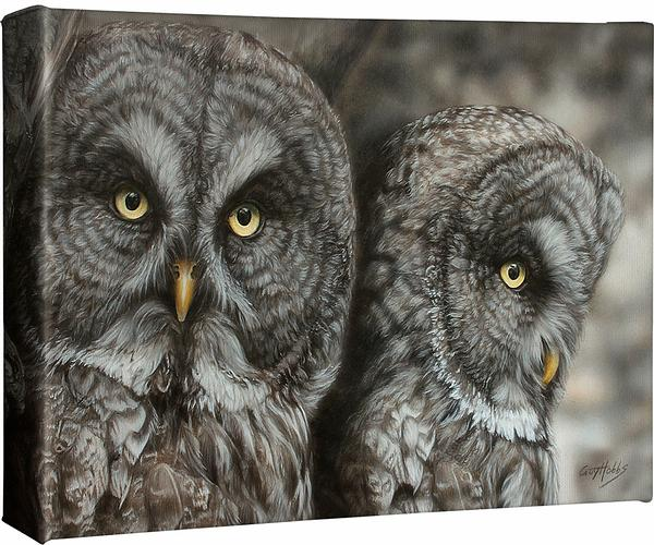 Two Hoots—Great Gray Owls.