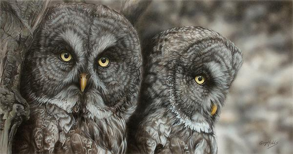 Two Hoots-Great Gray Owls Art Collection